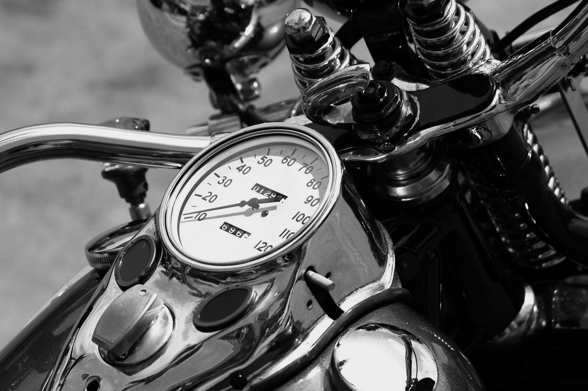Harley davidson springer